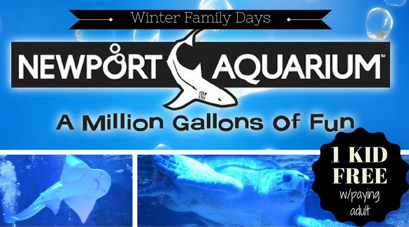 Newport aquarium winter family days 2017 lexfun4kids Aquarium free days