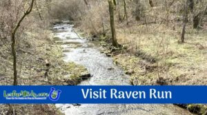 Raven Run Events & Review