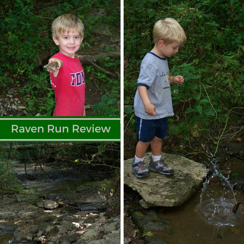 Raven Run Review