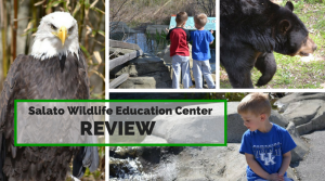 Salato Wildlife Education Center *Review & Events