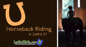 Horseback Riding Instruction