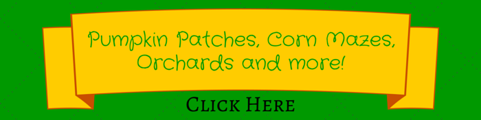 patches banner