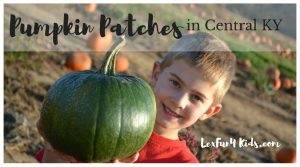Pumpkin Patches in Central KY