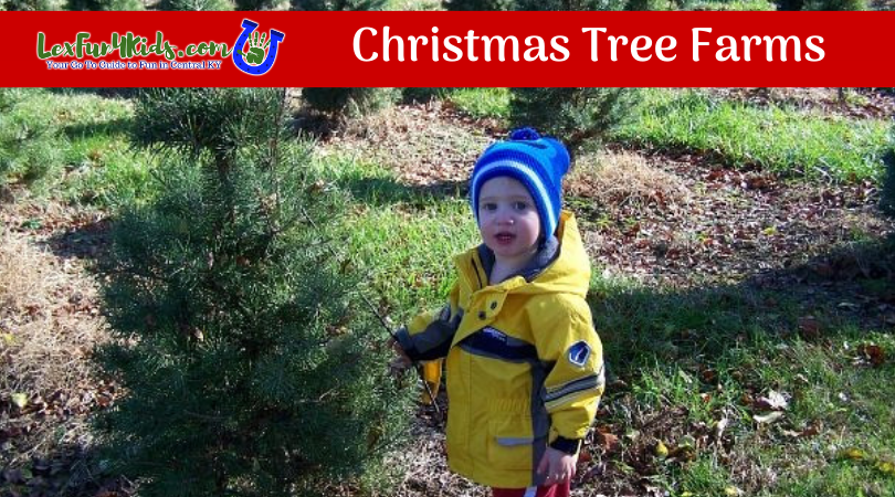 Christmas Tree Farms and Shops