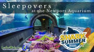 Sleepover!  Newport Aquarium, Cincinnati Zoo, Cincy Museum Center, Louisville Zoo