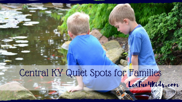 Quiet Activities And Places To Go In Central KY