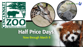 Half Price Days Cincinnati Zoo
