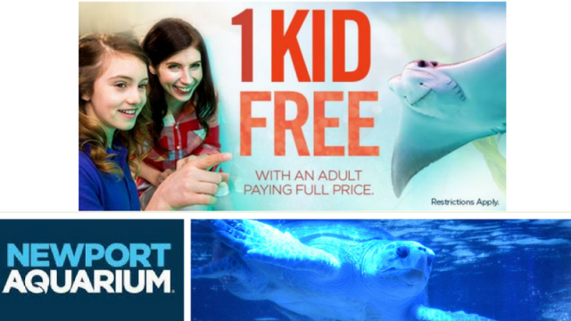 Newport Winter Free Admission