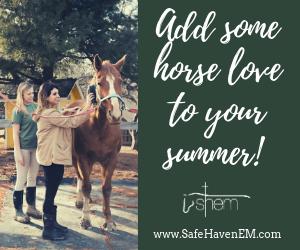 Safe Haven Equine Summer Camps 2019