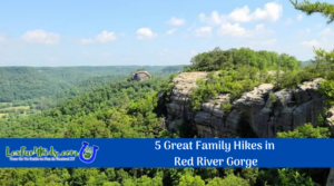 5 Great Family Hikes in the Red River Gorge