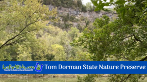 Hike the Kentucky River Palisades/Tom Dorman State Nature Preserve
